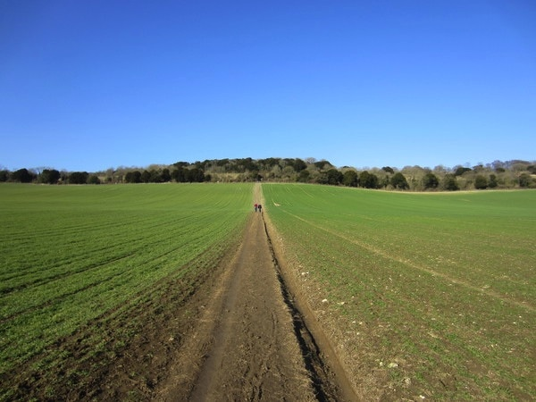 Farmlands near Newlands Corner, Surrey Hills, one of the locations you can walk in comfort with Hike to Indulge