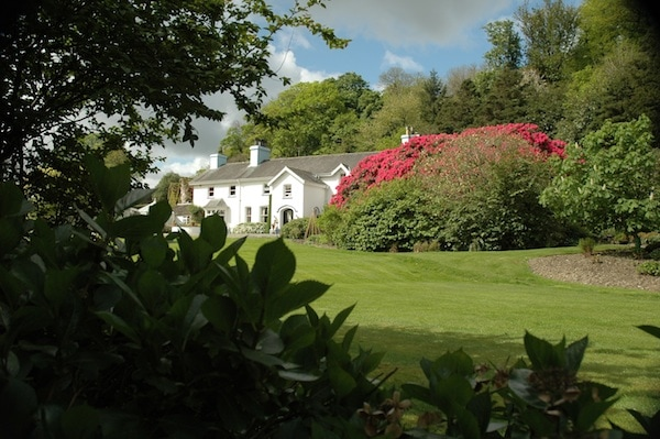 Ynyshir Hall in Wales runs Relax and Revive breaks - so you can come for your health as well as the champagne