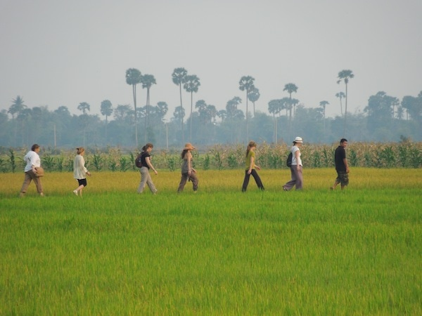 Walking through rice fields with Escape to Shape