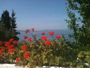 The view from Caroline's room, Rhea, on a yoga retreat on Silver Island in Greece