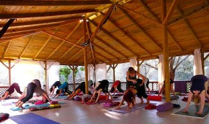 Yoga at Huzar Vadisi with Catherine Annis