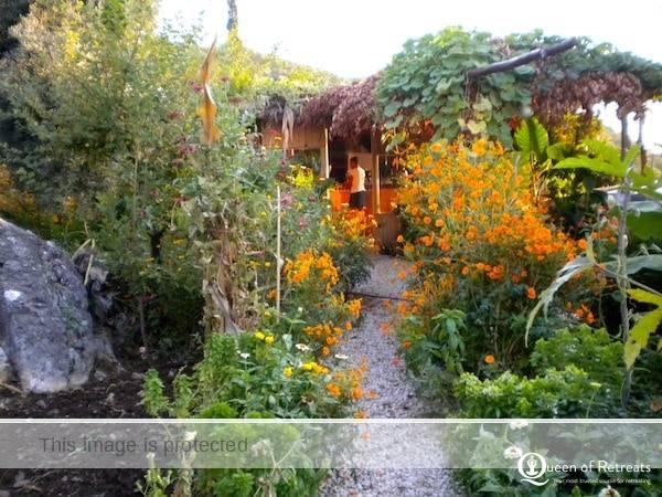 Suleymans garden path