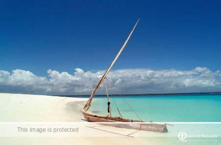 Wildfitness Zanzibar beach