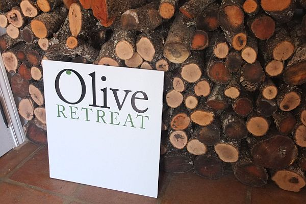 Olive Retreat Body and Mind detox Andalucia Spain