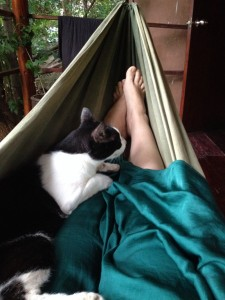 Sanctuary Thailand relaxing on bedroom balcony with cat