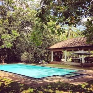 Adventure Yogi Sri Lanka pool