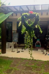 samahita yoga hall 2