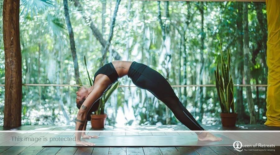 Alladale Yoga Retreat in the Scotish Highlands