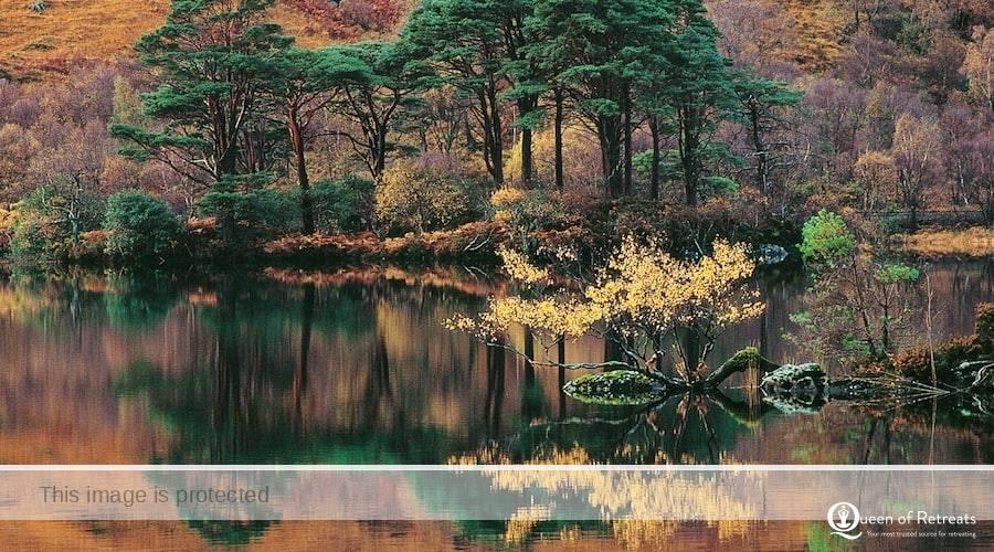 alladale reserve scotland bespoke retreat