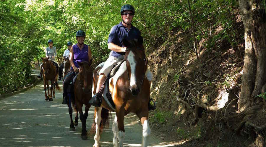 Jessica McGregor Johnson Mustique healing with horses
