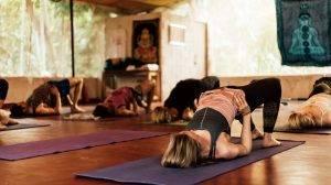 PadmaKarma Kerala India yoga retreat