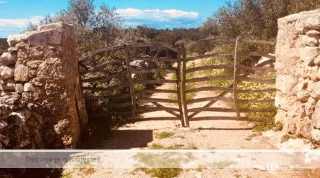 Fitness Retreat Wildfitness Menorca Spain