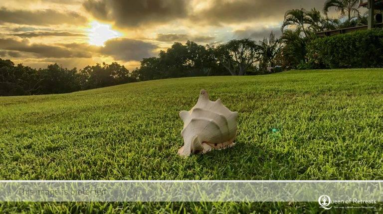 Advivum Resort Hawaii
